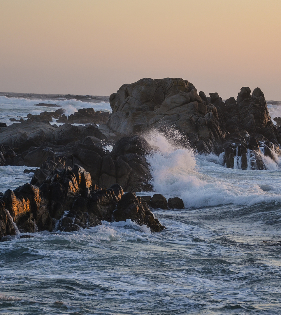 POPULAR PACIFIC GROVE ATTRACTIONS ARE JUST MINUTES FROM OUR HOTEL