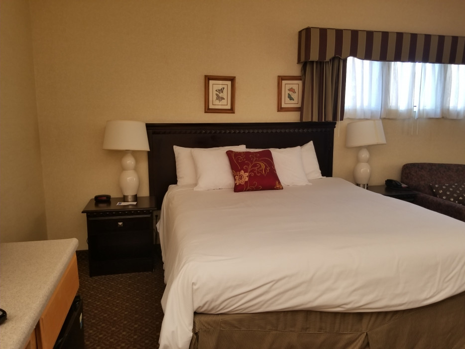 ONE KING SUITE